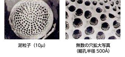 海泥の粒子・浸透図